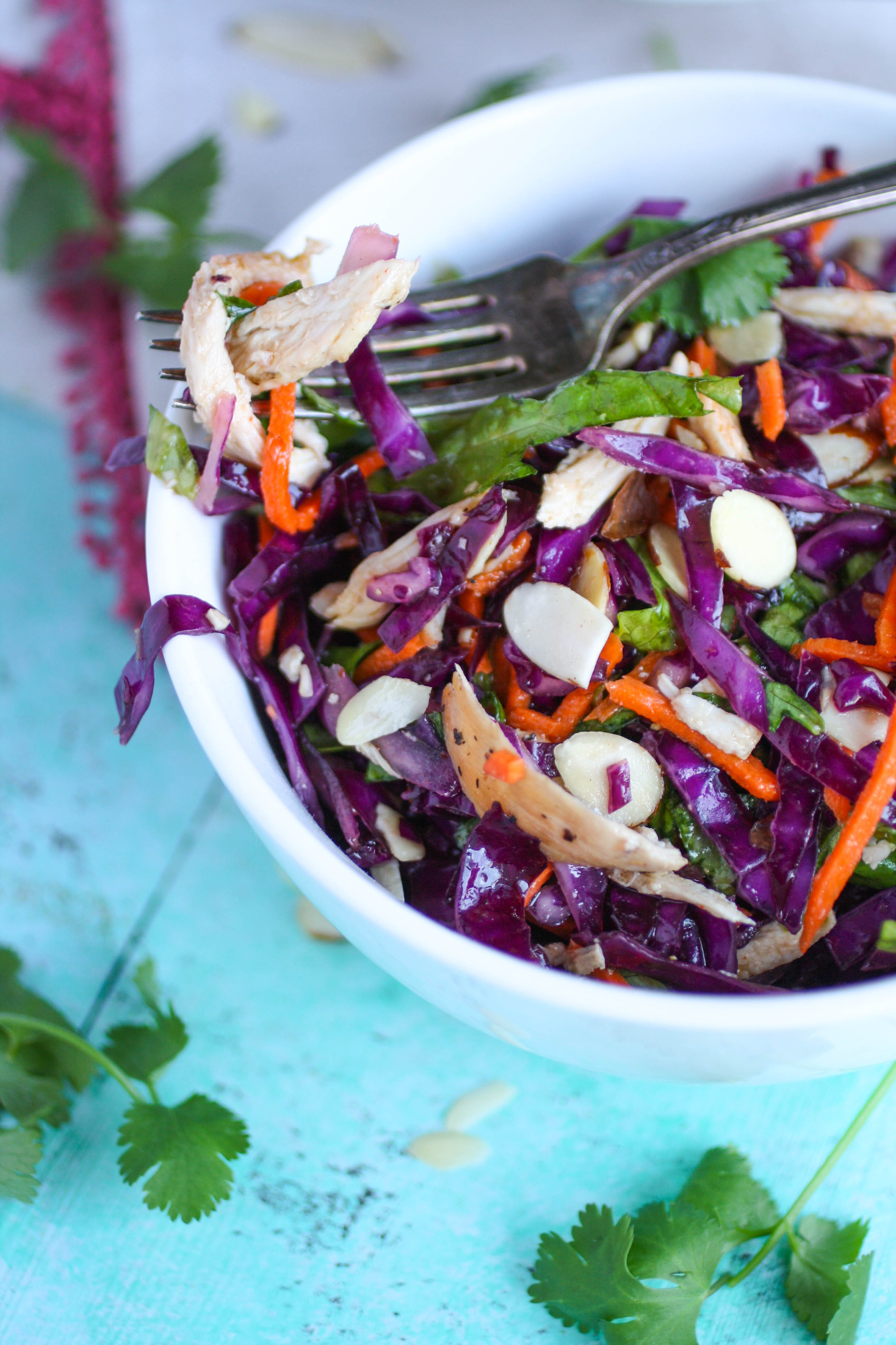 Crunchy Cabbage & Chicken Salad with Sesame Dressing is a nice dish to serve for lunch or dinner. You'll love the color and flavor in this crunchy cabbage salad!