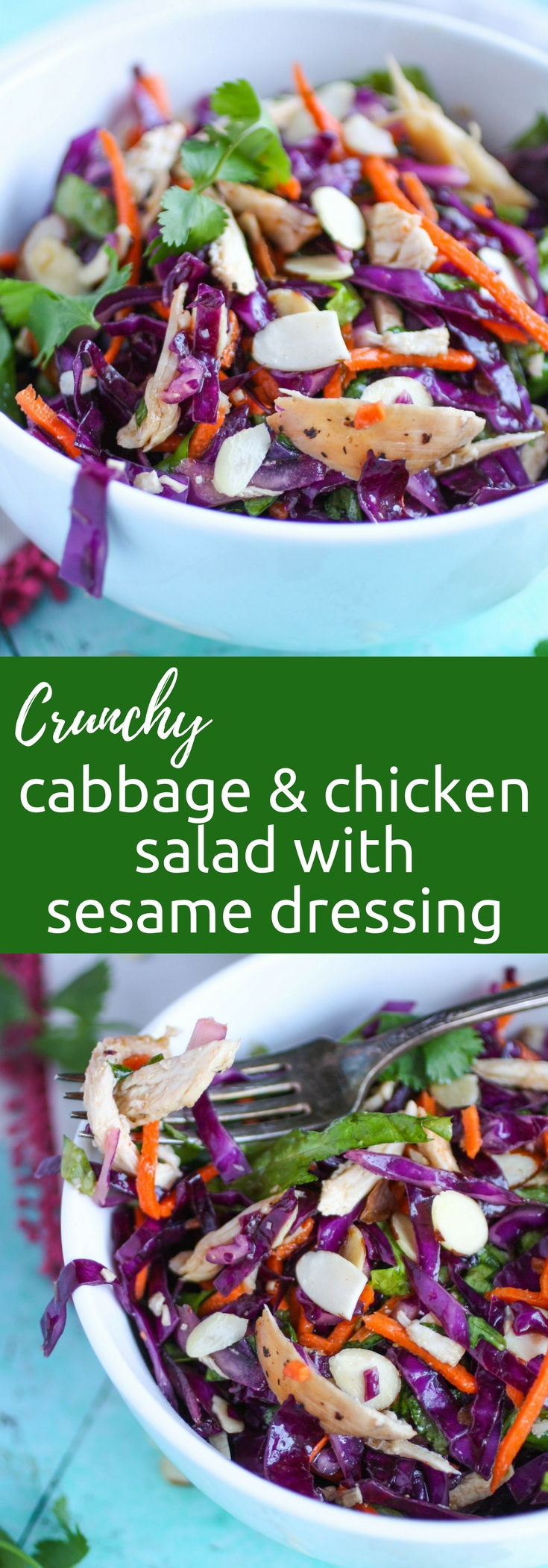Crunchy Cabbage & Chicken Salad with Sesame Dressing is a salad to skin your teeth into. This crunchy cabbage salad is a delight in color and flavor!