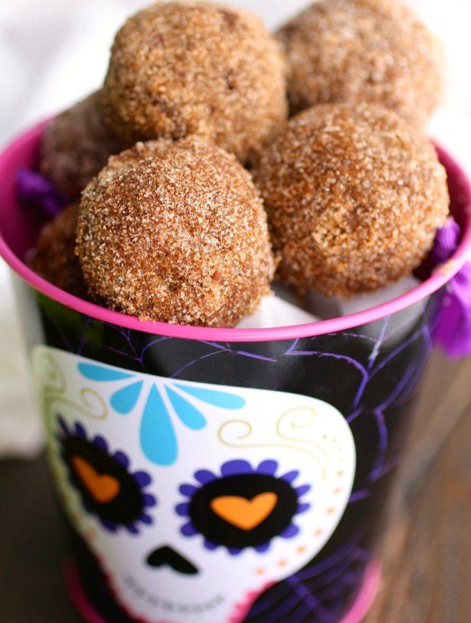 Cinnamon-Sugar Coated Chocolate Donut Holes