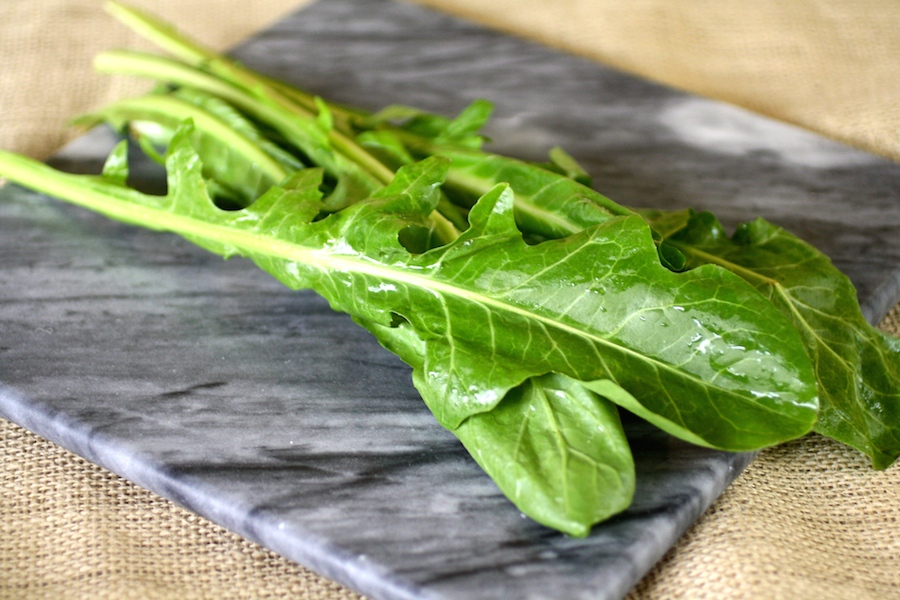 Dandelion greens make the meal for Bucatini with Wilted Dandelion Greens and Anchovy Sauce