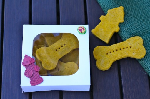 Pumpkin-Peanut Butter Dog Biscuits make a great treat for your dog. Package them up for your neighbors and friends, too!