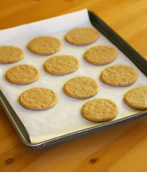 Lemon Iced Gingersnap Cookies Recipe (Gluten Free) I Grab a Plate