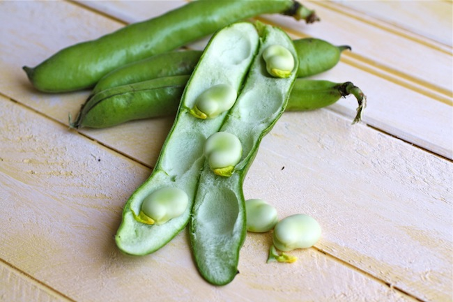 Fava Beans in their Pos