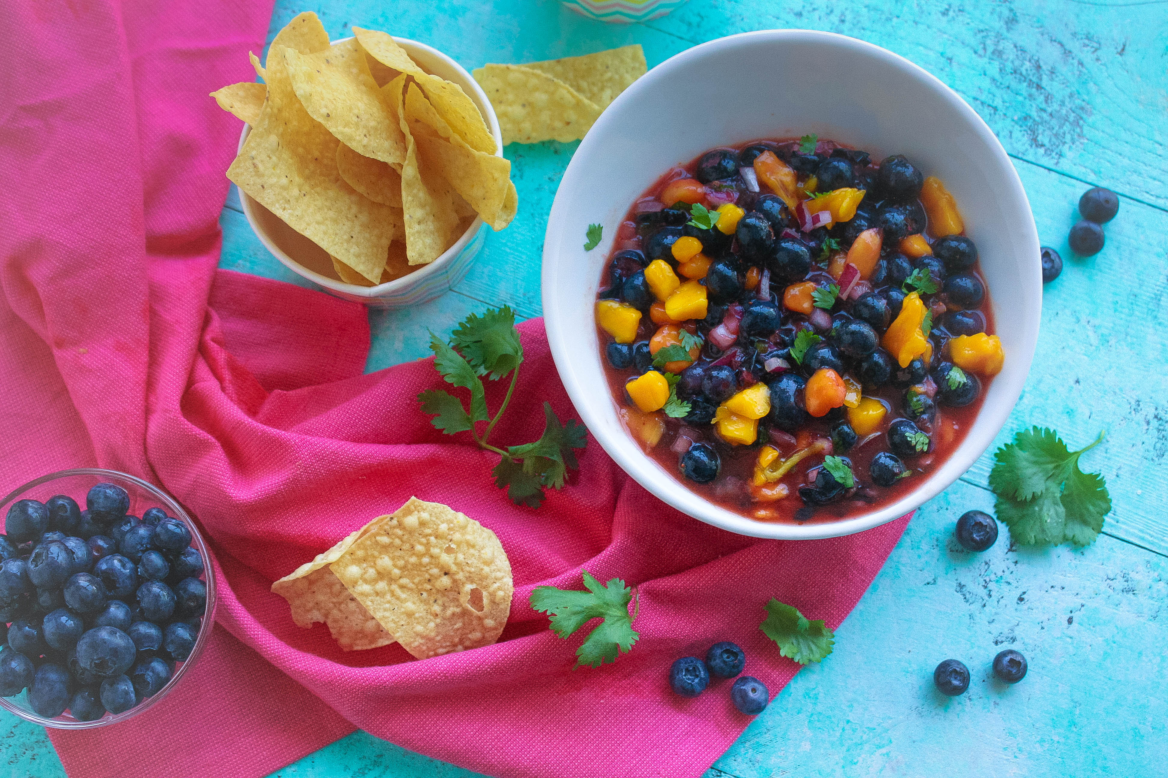 Grab some ships and dig into Blueberry-Mango Salsa! Blueberry-Mango Salsa is fabulous as a snack, but it's great for main dishes, too!