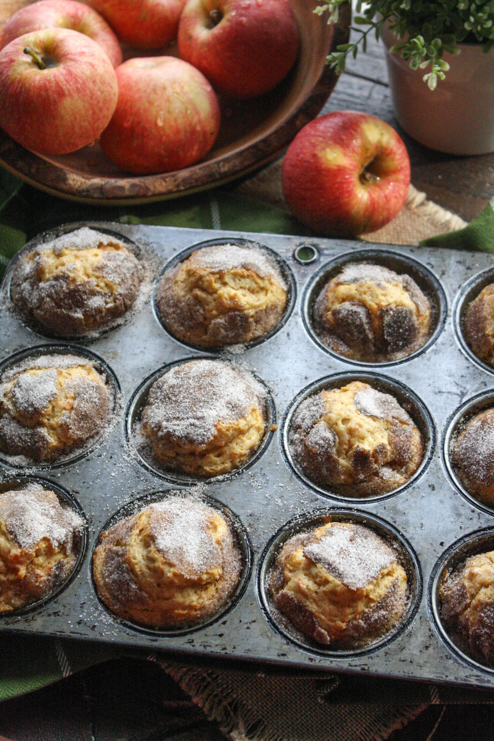 Cinnamon-Sugar Apple & Sweet Potato Muffins are a lovely treat or snack for the season!