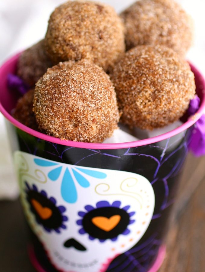 Cinnamon-Sugar Coated Chocolate Donut Holes